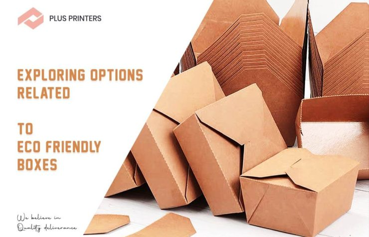 Exploring Options Related to Eco Friendly Boxes