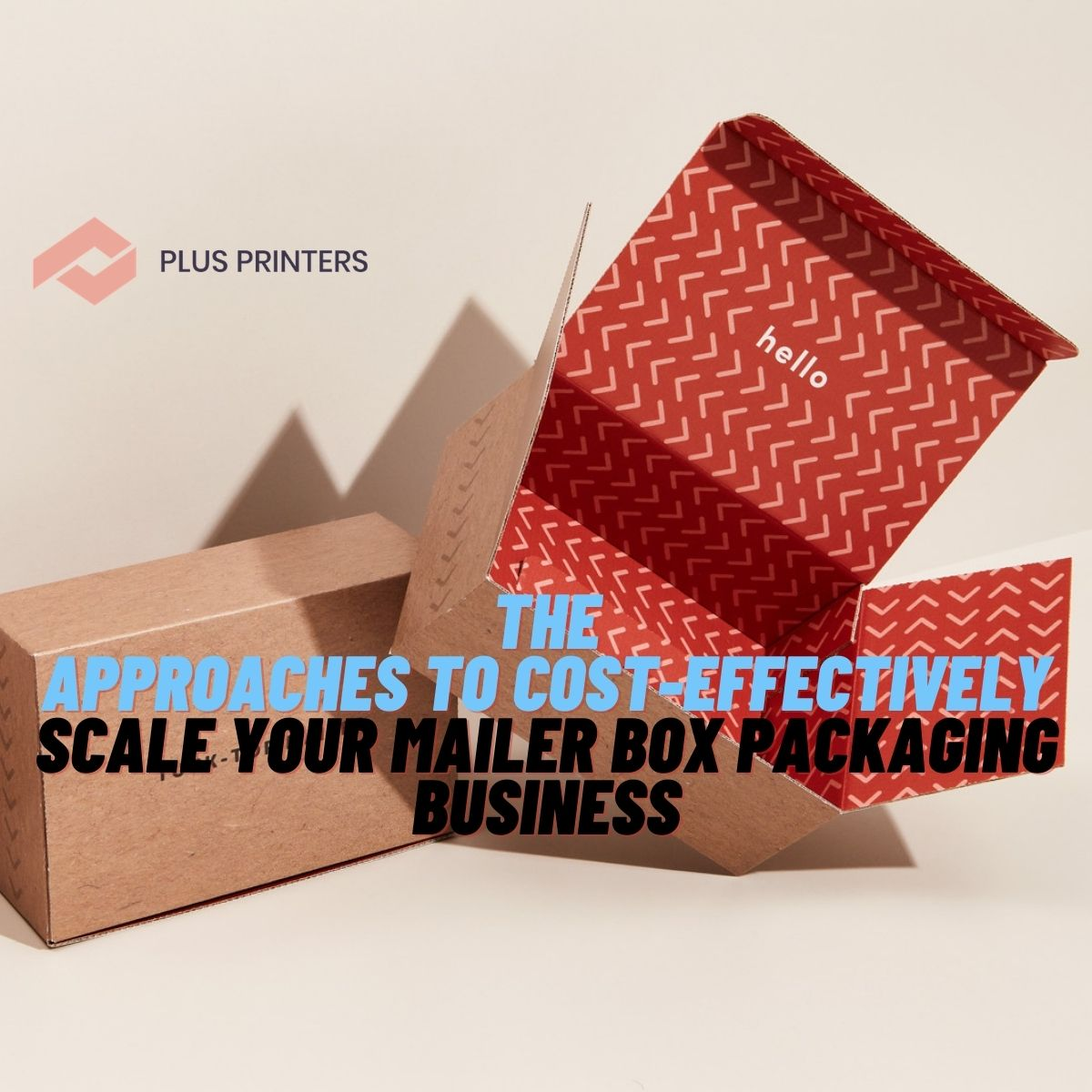 Scale Your Mailer Box Packaging Business