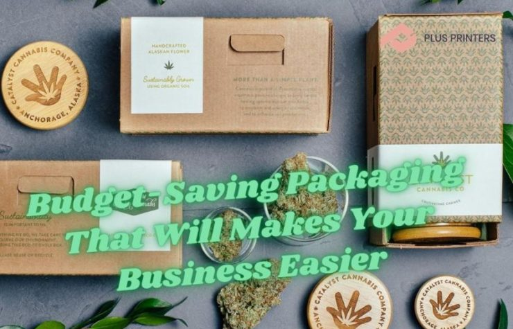 Budget-Saving Packaging That Will Makes Your Business Easier