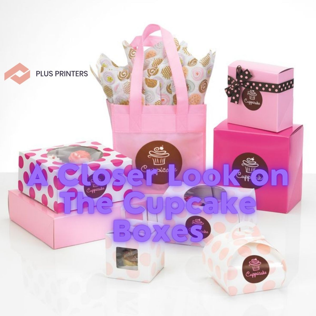 A Closer Look on The Cupcake Boxes