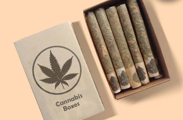 Get A Picture Of The Untold Story Of Cannabis Boxes!